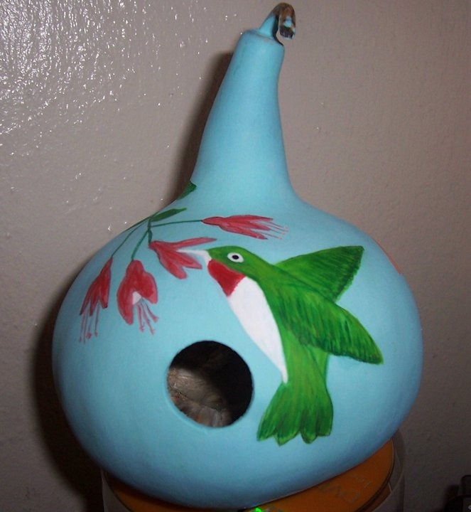 Painted Gourds On Pinterest The World S Catalog Of Ideas