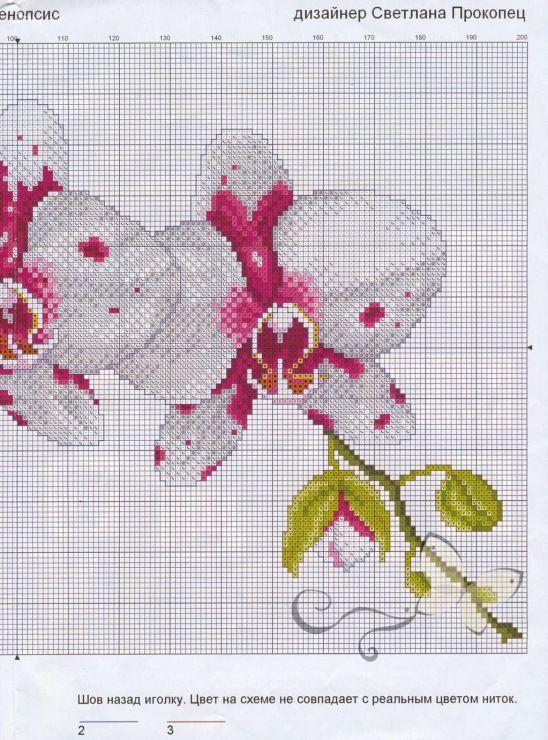 Вышивка схема орхидея 75