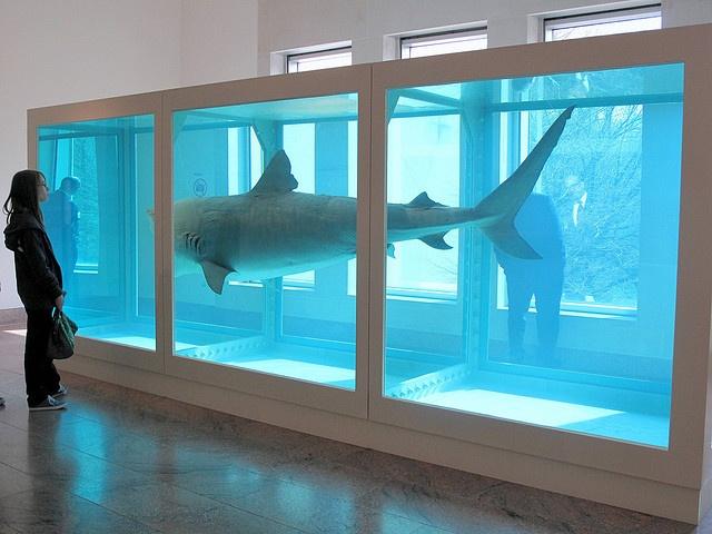 The Carcass Near the Gift Shop: Damien Hirst's Shark