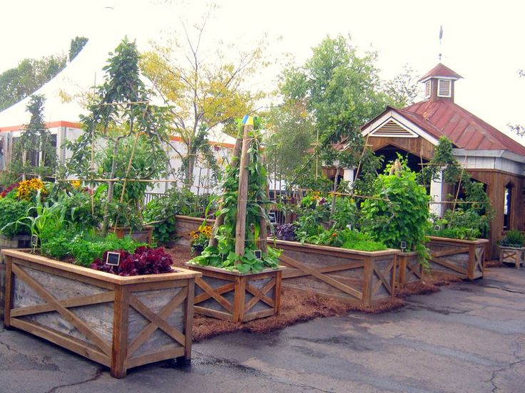 cool ideas for vegetable garden planters garden ideals pinterest