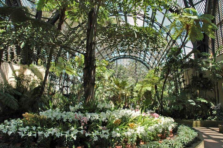San Diego Botanical Gardens Sd Botanical Garden Pinterest