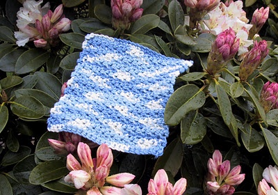 Seed Stitch Dishcloth | Crochet Free Pattern