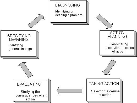 Action research methodology example