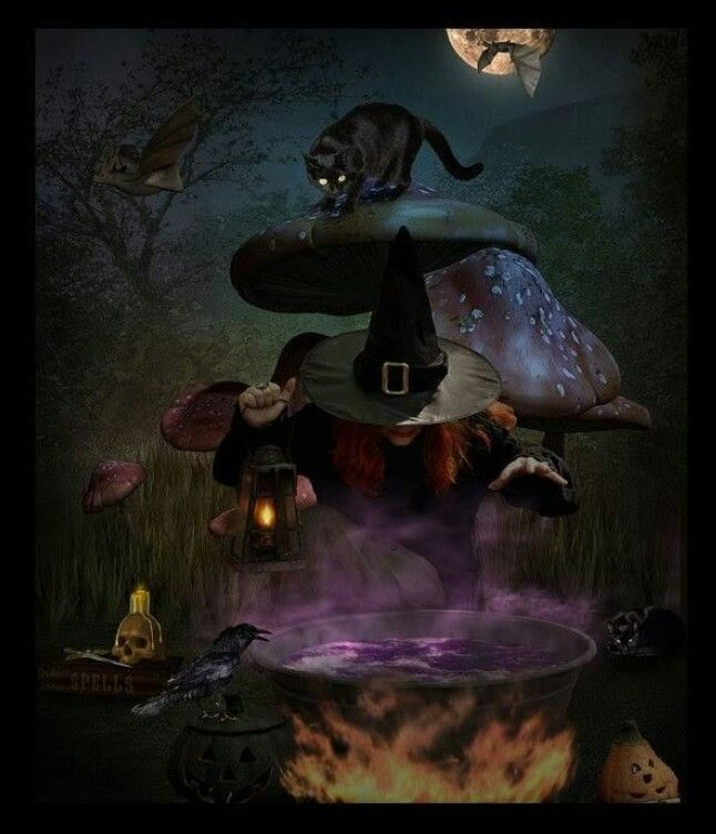 Pin by Chrystal Harris on Witches Brew | Pinterest