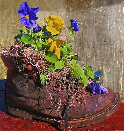 Google Image Result for http://ideasforflowerpots.info/picture/plantpot5.jpg