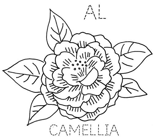 Camellia Flower Line Drawing : Alabama camellia state flower embroidery pinterest