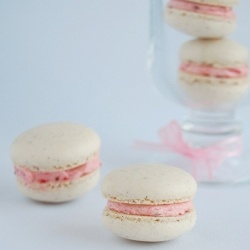 Vanilla bean macarons with roasted strawberry buttercream