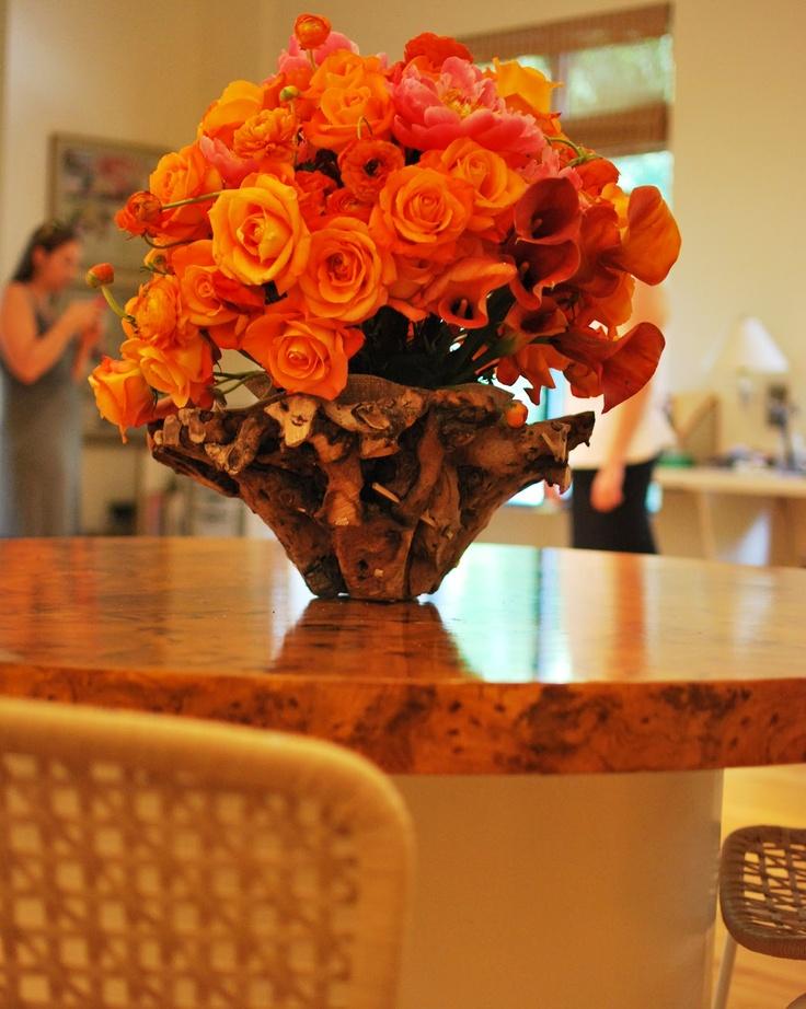 Blood Orange Roses   An Orange Rose For You   Pinterest
