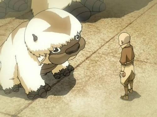 Little Appa and Aang