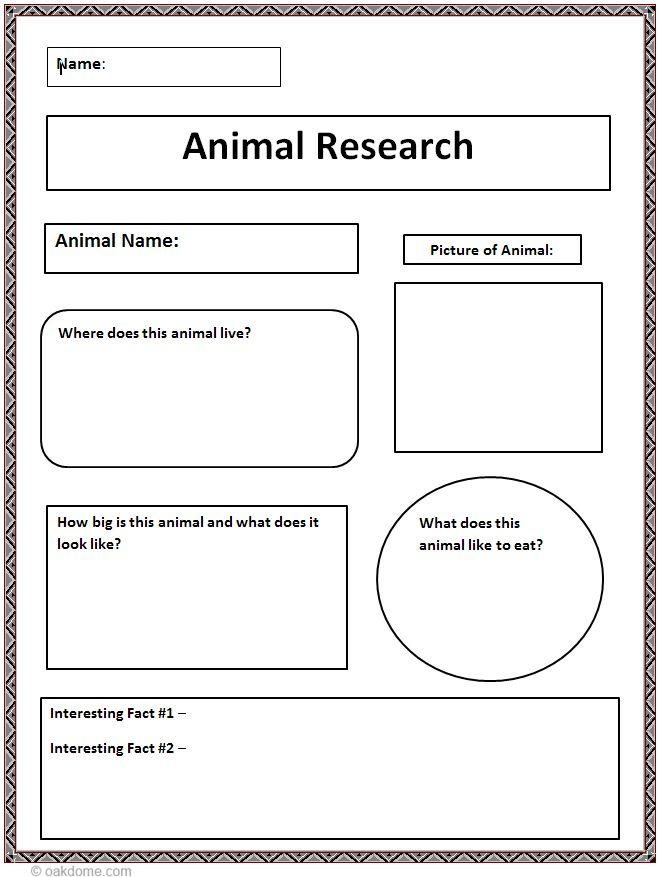 Essay on cruelty to animals