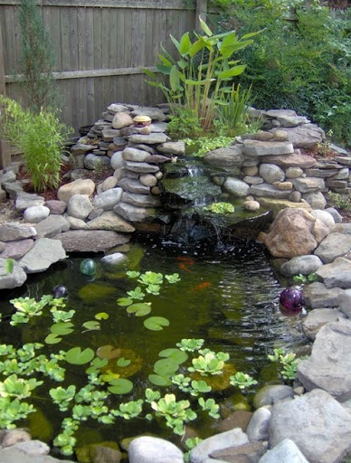 A whimsical backyard pond water garden pinterest for Backyard pond animals