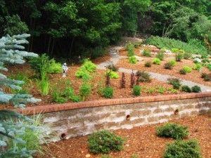 Positive Elements of Landscape Design