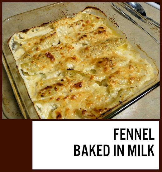 cream fennel baked in cream recipes dishmaps fennel baked in cream ...