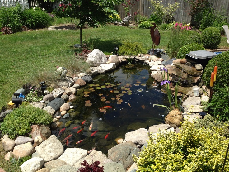 Awesome Koi Fish Pond For A Small Yard For The Yard