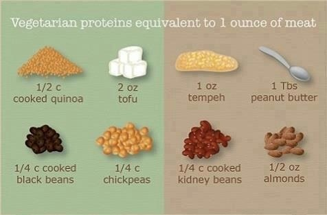 Plant protein and building muscle