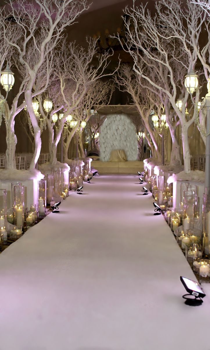Winter wedding ceremony decorations party ideas pinterest for Decorations for weddings at home