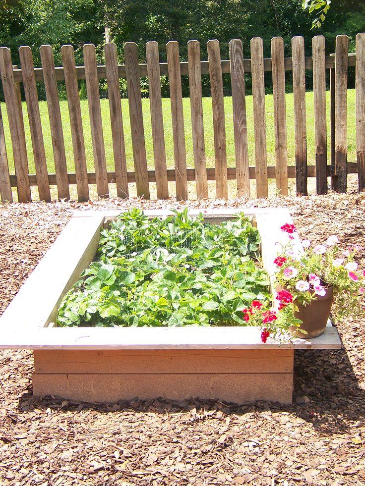 Raised Garden Box Diy Pinterest