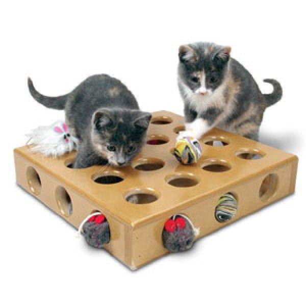 multiple cat feeding station