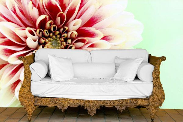 Design your own Wallpaper and easy DIY Wall Murals from www.customizedwal...