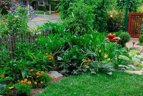 Landscaping With Vegetables : Edible landscaping rosalind creasy vegetable gardening