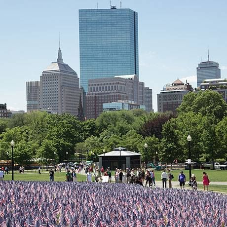 memorial day flags boston common 2014
