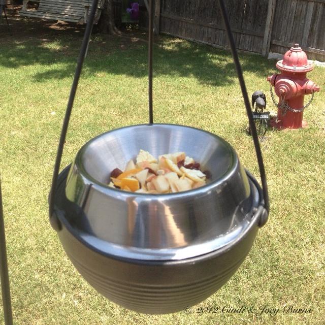 Upcycled backyard bird feeder i used a hanging flower for Upcycled bird feeder