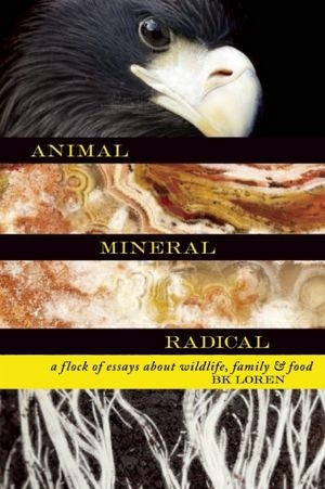 essays on wildlife photography