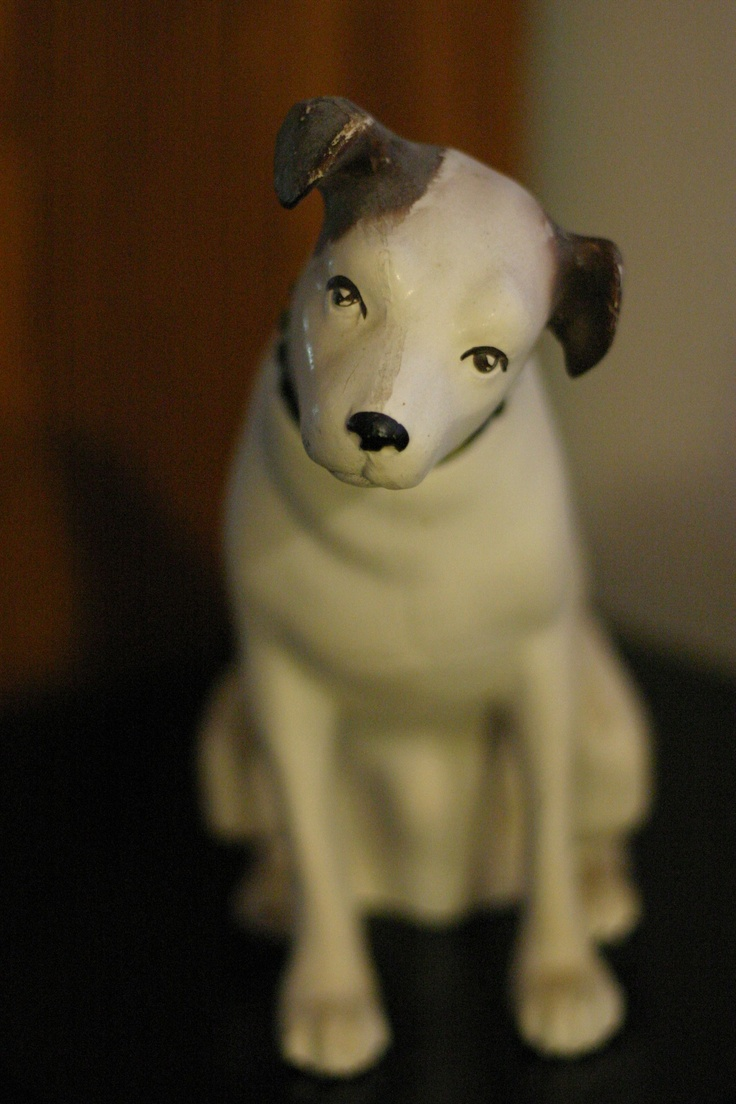 What Is The Name Of The Rca Dog