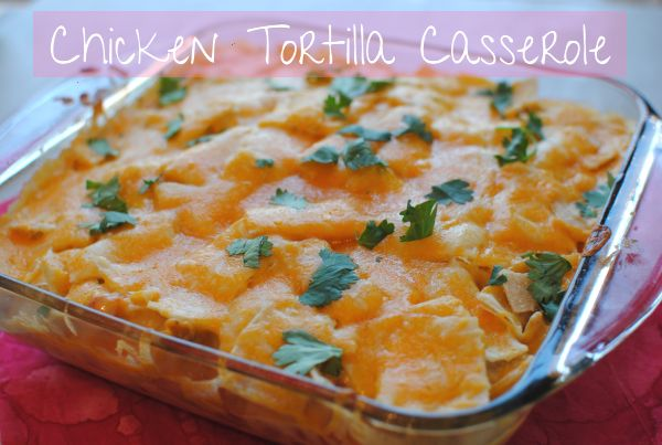 Easy Chicken Tortilla Casserole | Pennywise Cook
