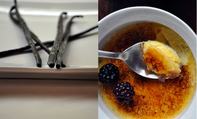 Vanilla Bean Creme Brulee | Food and Drinks I Love | Pinterest