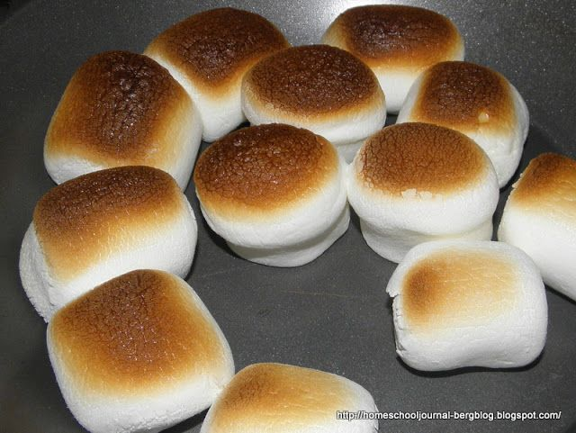 Indoor s'mores | Crafts for the girls | Pinterest