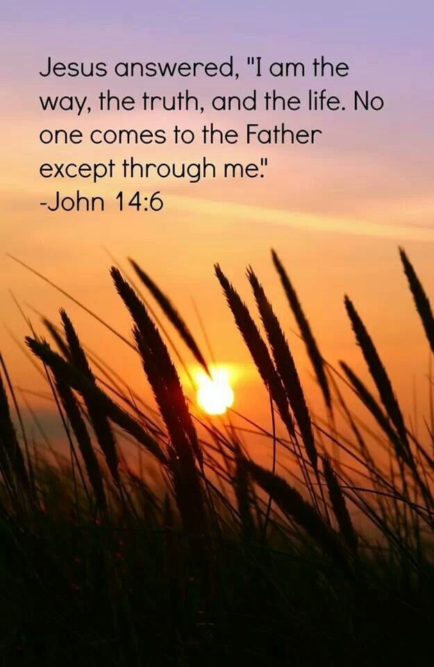 "John 14:6 Jesus told him, ""I am the way, the truth, and the life. No one can come to the Father except through me."
