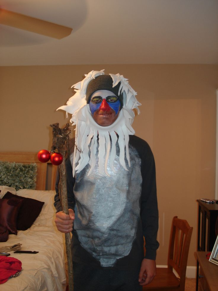 Rafiki Lion King Costume Images