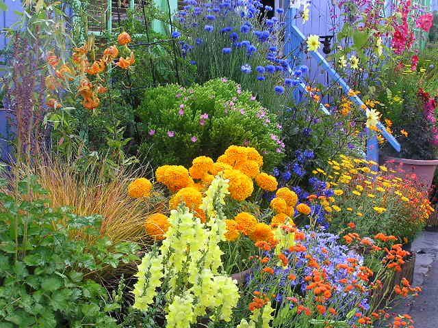 Pin by Vered Gabay on Gardens of Eden Pinterest