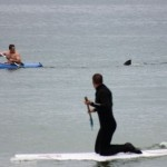 Great White Shark stalks Cape Cod man