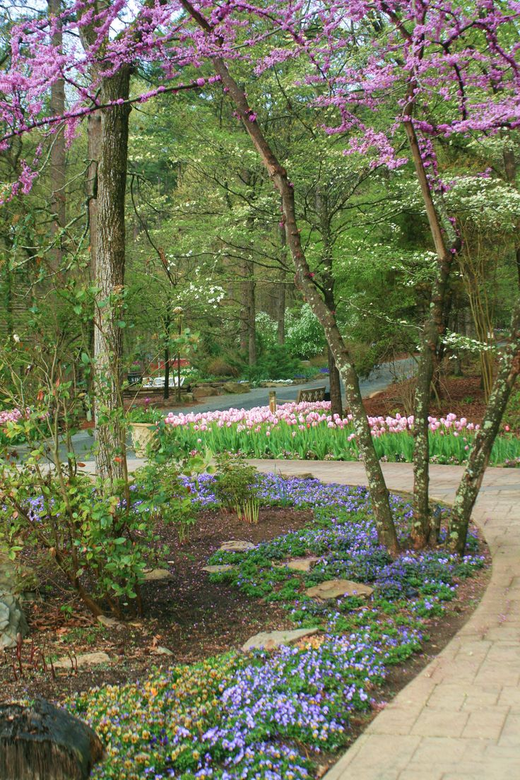 Garvan Woodland Gardens Hot Springs Ar Arkansas Pinterest