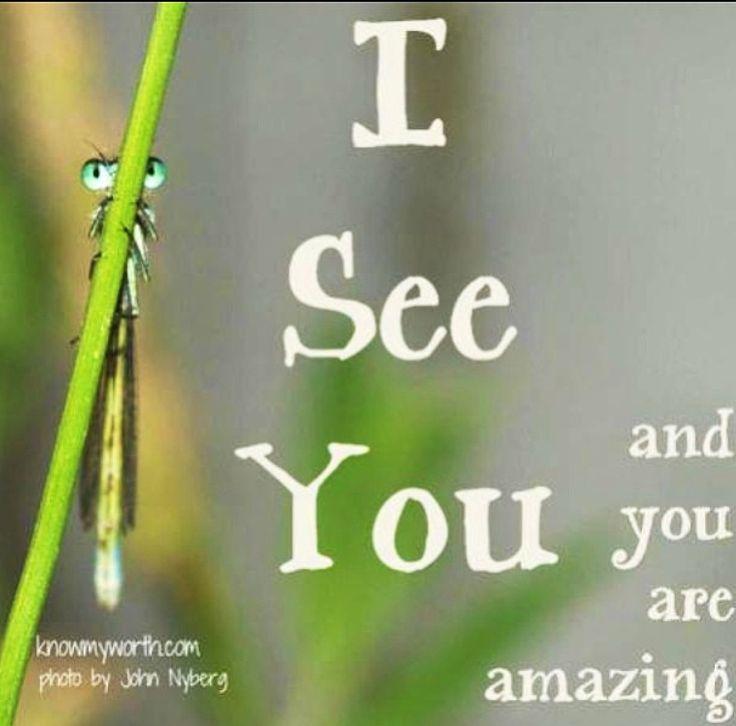 You Re Amazing To Me: You're Amazing To Me