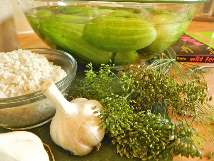 Old Fashioned Refrigerator Pickles Recipe