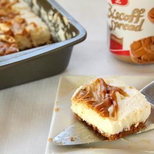No Bake Biscoff Swirl Cheesecake with Chocolate Moosey