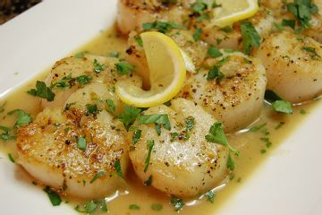 ... sea scallops with fresh cherries and tarragon seared scallops with