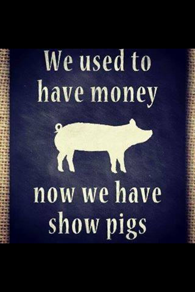 martyn pig quotes This website and its content is subject to our terms and conditions tes global ltd is registered in england (company no 02017289) with its registered office at 26 red lion square london wc1r 4hq.