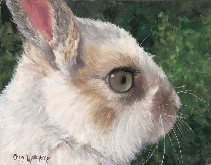 White rabbit painting - photo#6