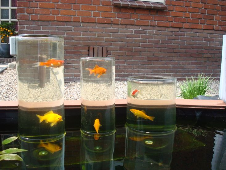 A glass fish tower for pond garden washing water for Fish tank in pond