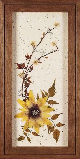 Панно из сухих цветов и листьев