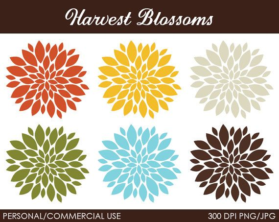 Harvest Blossoms Clipart - Digital Clip Art Graphics for Personal or ...