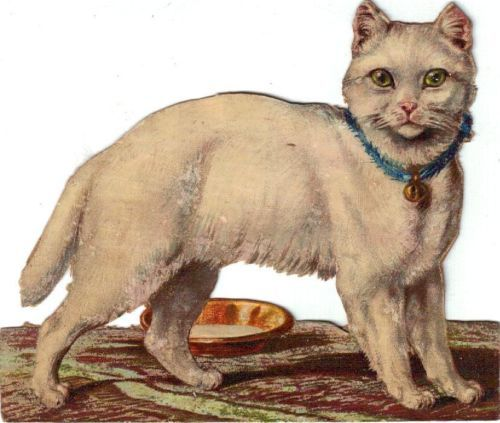 Larger Victorian Die Cut Scrap White Kitten C1880s