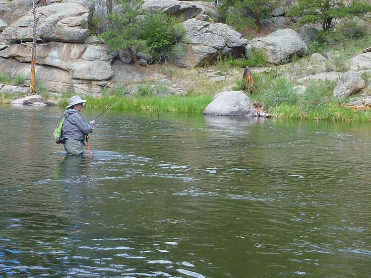 fishing 11 mile canyon guffey colorado pinterest