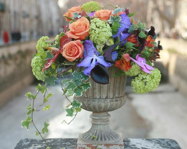 Pin by Annie Rizzo on Plantes - fleurs - Décors fleuris - arbres  P ...