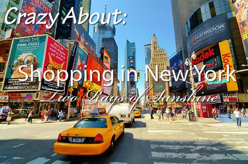 shopping in new york guide