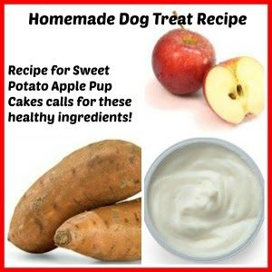 Homemade dog treat recipe for Sweet Potato Apple Pup Cakes! Special ...